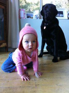 Best dog trainer on Northern beaches