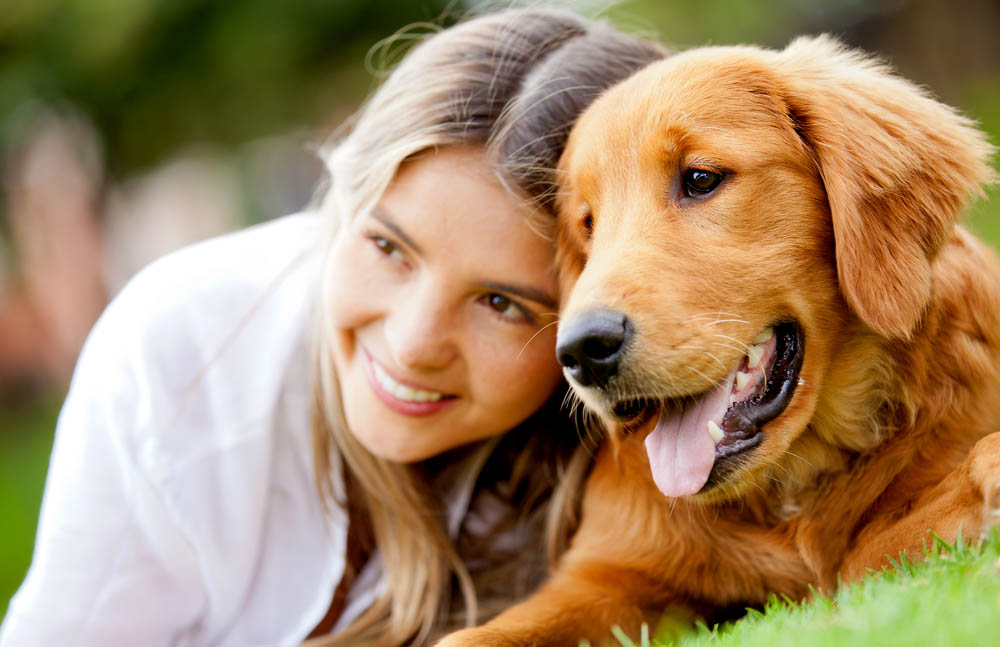 Dog Trainer Sydney, Dog Training, Dog Behaviourist